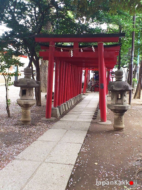 Hanazono-Shrine-2