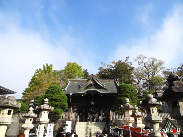 Step Niomon Gate
