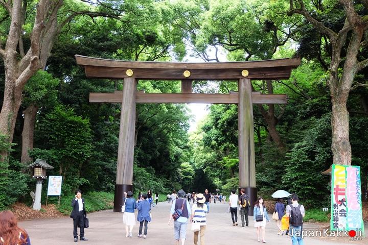Meiji-Shrine-Torii