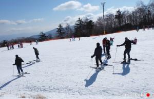 Snow Town Yeti Shizuoka