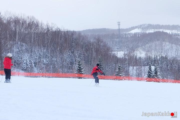 เล่นสกี