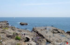 เกาะ Enoshima Island