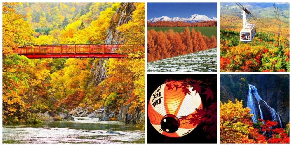 ฤดูใบไม้ร่วงในฮอกไกโด