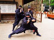 Oshino Shinobi no Sato