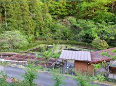 รีวิวประสบการณ์วูฟที่ญีปุ่น
