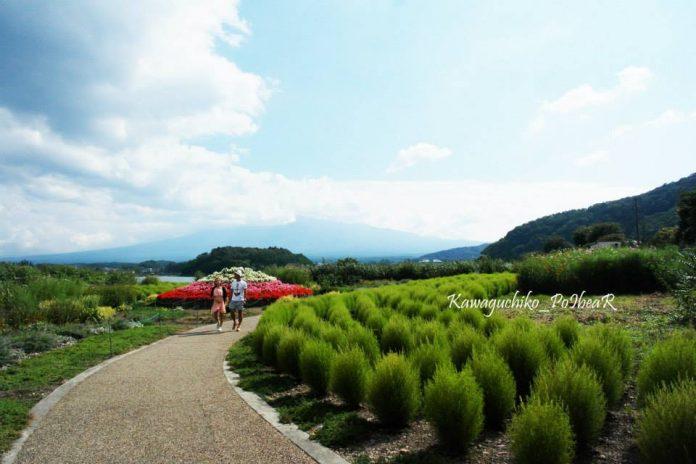 Kawaguchiko Lake Sightseeing