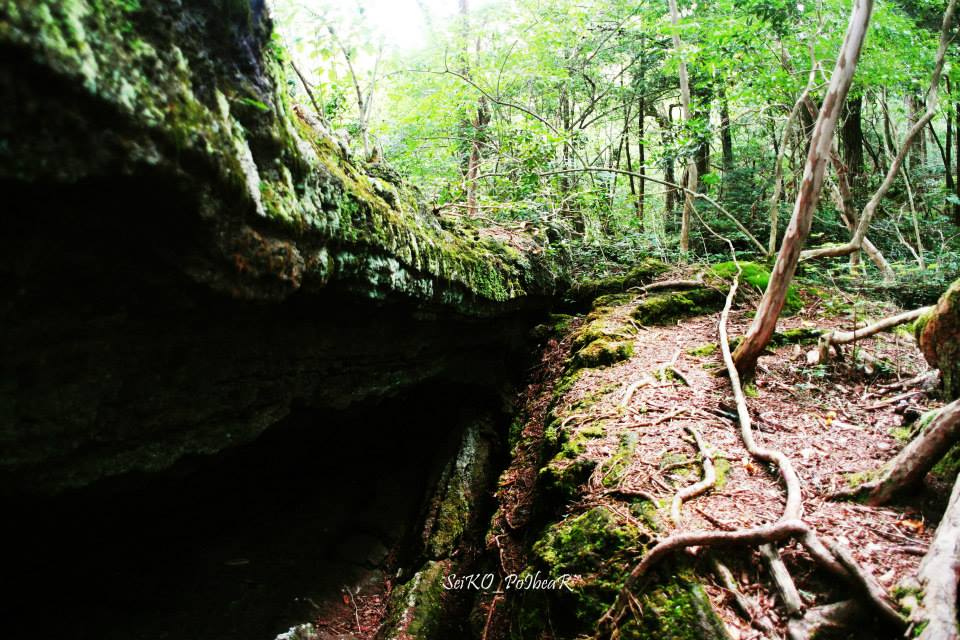ทางเดินไปถ้ำ