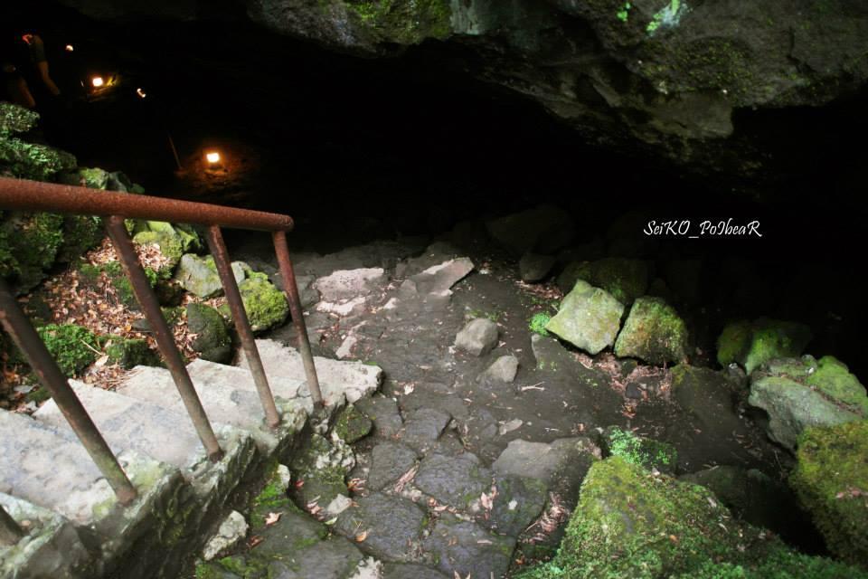 ทางไปถ้ำ Saiko Bat Cave