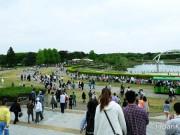 ด้านในของสวน Hitachi Seaside Park