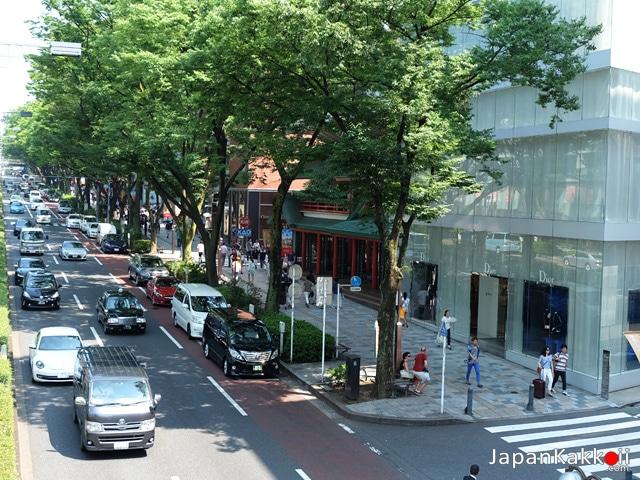 Omotesando Road