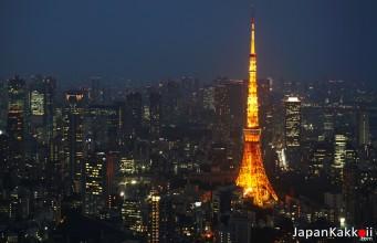คู่มือเที่ยวโตเกียว (Tokyo Guide)