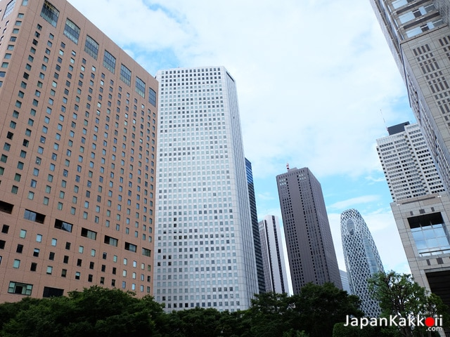 Shinjuku Skyscraper Area