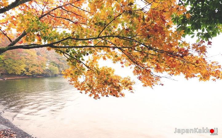 Lake Chuzenji ในฤดูใบไม้ร่วง