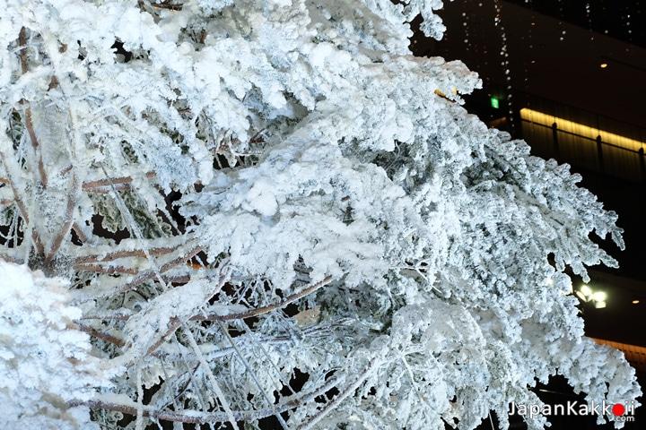 หิมะบนต้นคริสต์มาส