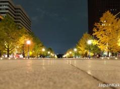 ใบไม้เปลี่ยนสีหน้าสถานี Tokyo Station