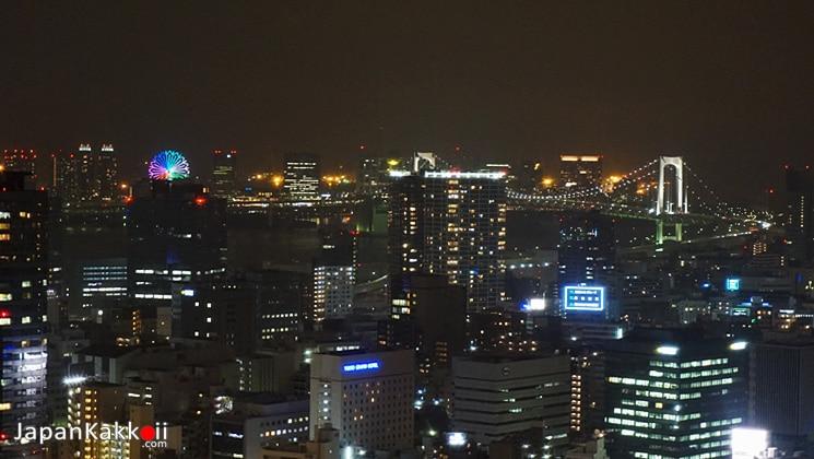 Odaiba View