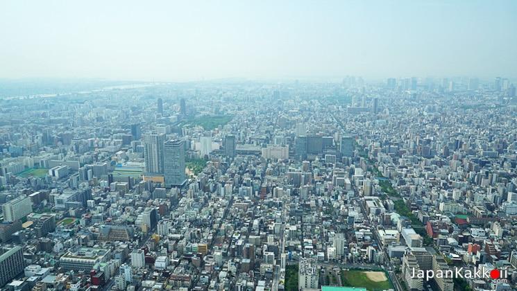 วิวโตเกียว