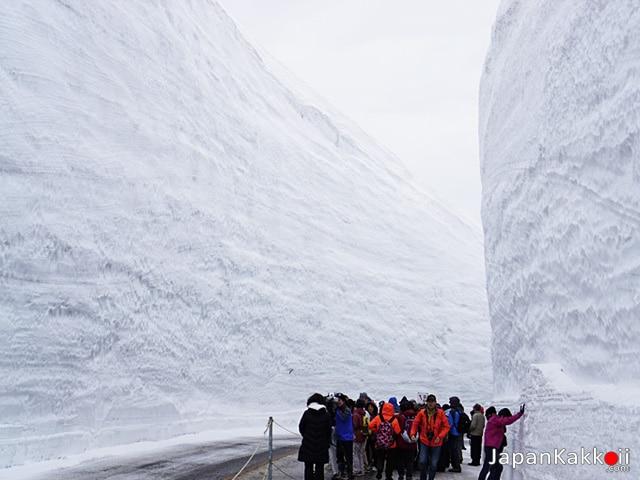 Toyama -Snow Wall