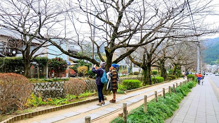 ถนนทางไปวัดกินคะคุจิ