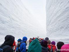 Tateyama Kurobe Alpine Route - กำแพงหิมะเจแปนแอลป์