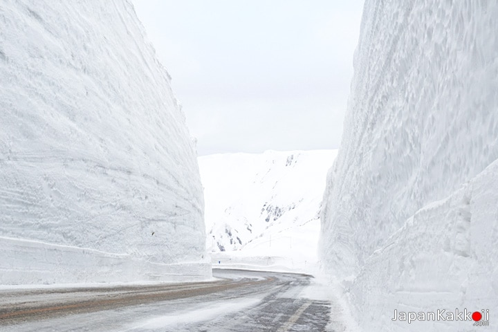 Tateyama Snow Wall