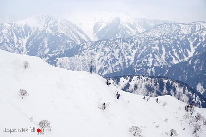 วิวเทือกเข้าแอลป์ญี่ปุ่น