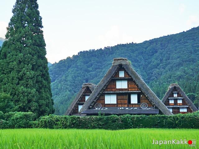 หมู่บ้านในชิราคาวาโก (Shirakawa-go)