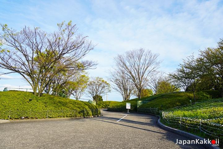 ทางเข้าสวน