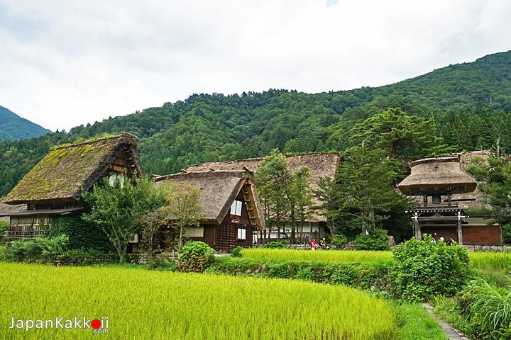 Myozenji Temple Shirakawa-go