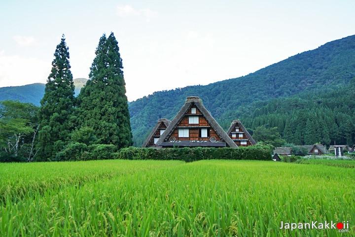 บ้านสามหลัง Kanmachi