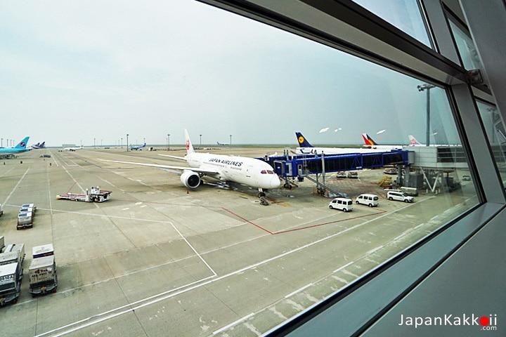การบินเจแปนแอร์ไลน์ (Japan Airlines)