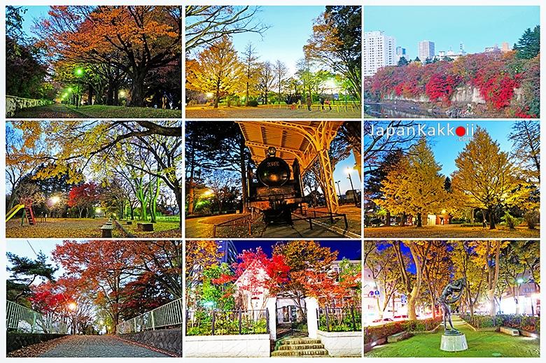 สวน Nishi Koen Park และถนน Jozenji-Dori