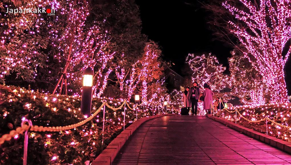 Shinjuku Terrace City Illumination