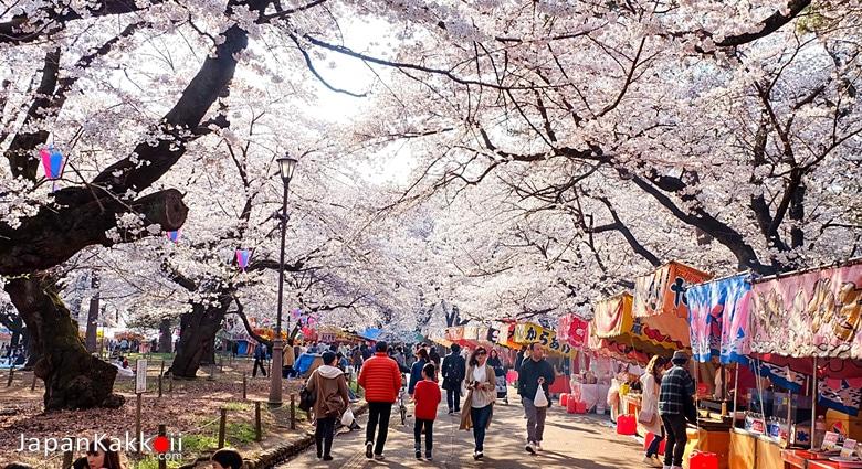 Omiya Park (大宮公園)