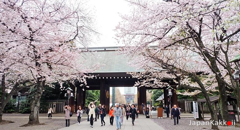 ศาลเจ้ายาสุกุนิ / Yasukuni Shrine