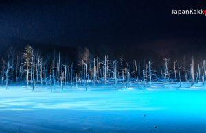 บ่อน้ำสีฟ้า Blue Pond (Aoi-ike) เมืองบิเอะ (Biei)