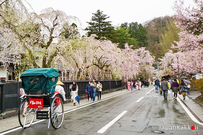 Kakunodate Samurai Village