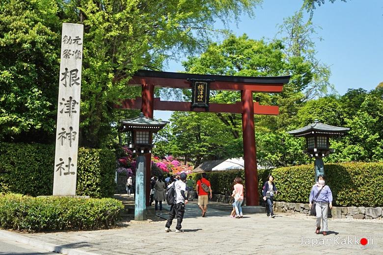ทางเข้าศาลเจ้าเนซุ (Nezu Shrine)