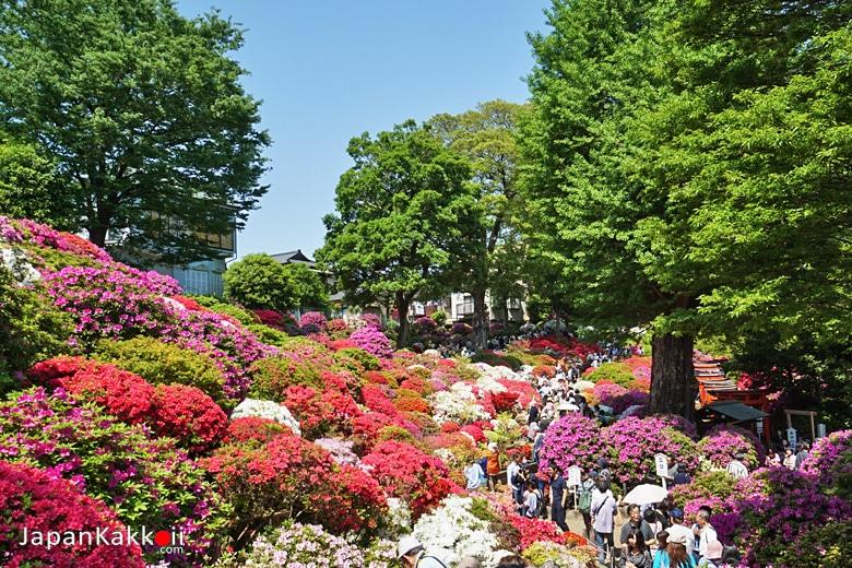 Tsutsuji Garden