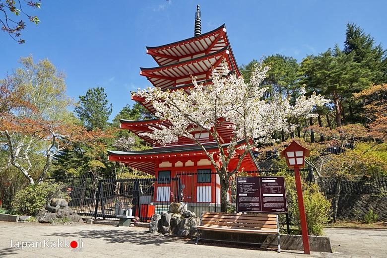 เจดีย์แดงชูเรโต (Chureito Pagoda)