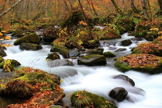 ใบไม้เปลี่ยนสีจังหวัดอาโอโมริ (Aomori)