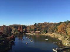 ใบไม้เปลี่ยนสีจังหวัดชิบะ (Chiba)