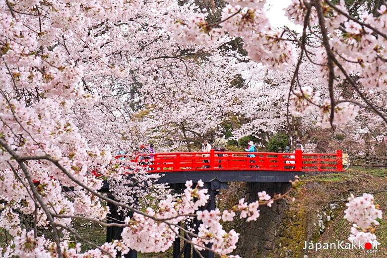 นสะพานแดง