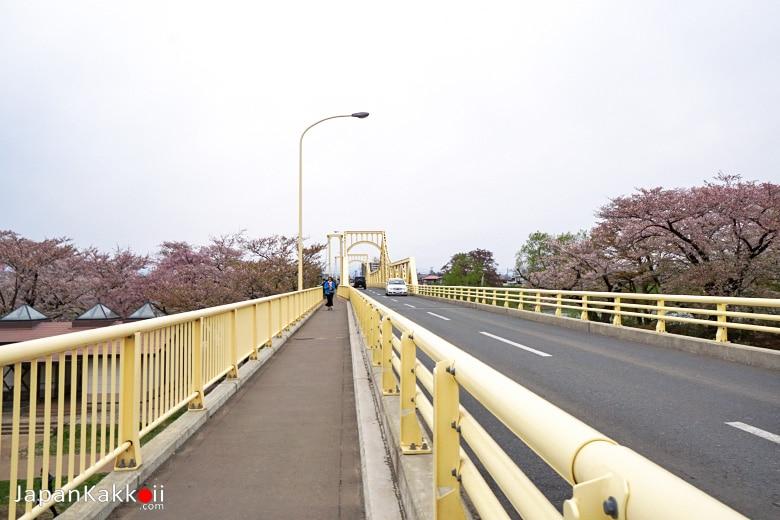 สะพานข้ามแม่น้ำ