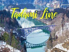 จุดชมวิวรถไฟ Tadami Line (Tadami River First Bridge Viewpoint)