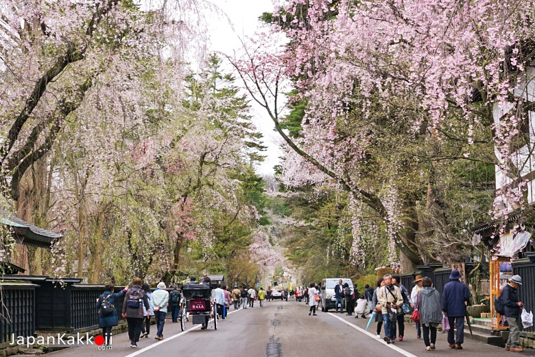 เมืองคะคุโนะดาเตะ (Kakunodate / 角館)