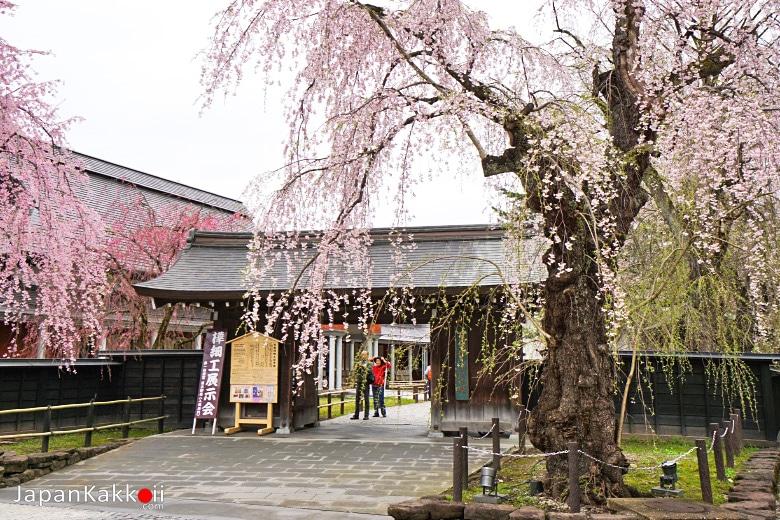 Denshokan Museum (角館樺細工伝承館)