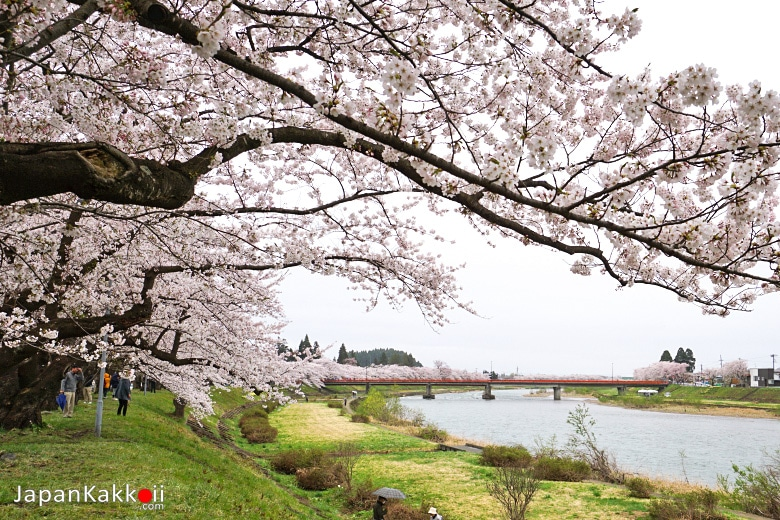 แม่น้ำฮิโนะคิไน (Hinokinai River)