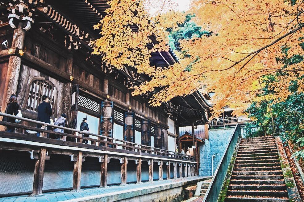 วัดเออิคันโดะ เมืองเกียวโต (Eikando Temple)