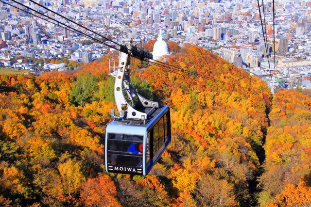 พยากรณ์ใบไม้เปลี่ยนสีในฮอกไกโด (Hokkaido)